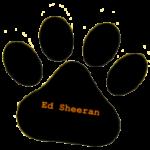 Ed-Shereen-175x175
